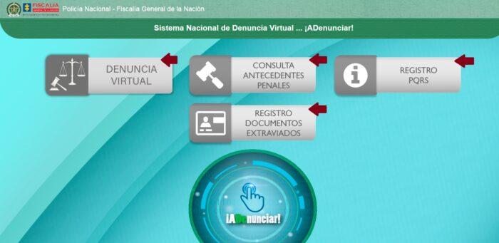 FIGURA 3. Sección Sistema Nacional de denuncia Virtual