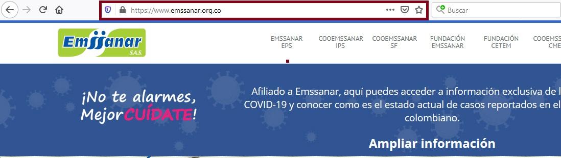 FIGURA 1. Portal online Emssanar