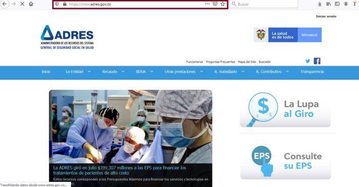 FIGURA 1. Portal online ADRES