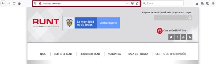 FIGURA 1. Portal online oficial RUNT